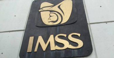 Modelo de carta patronal para el IMSS